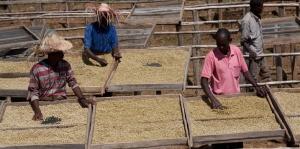 Das Bewusstsein für fairen Handel und ethisch korrekte Produktion steigt, gleichzeitig herrscht noch hoher Nachholbedarf, was die CSR-Bilanz in den Produktionsländern angeht.