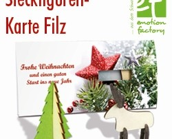 582 heri 250x202 - emotion factory: Steckfiguren-Karte Filz