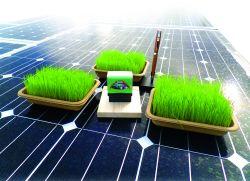 Heri-Rigoni setzt in der Produktion auf Solarstrom, Wärmerückgewinnung und Vermeidung von Emissionen. Die Pflanzschalen des eingegliederten Partnerunternehmens emotion factory bestehen aus nachwachsenden Rohstoffen, Stempelprodukte und Schreibgeräte werden CO2-neutral hergestellt.