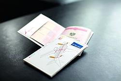 Flug zeug PASSPORT COVER_4