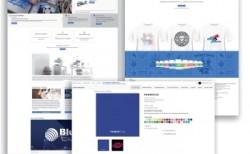 BlueFuture relauncht Website