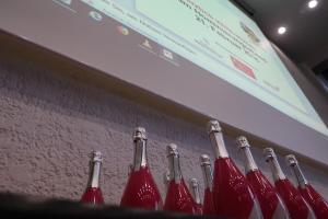 Ludwig 2018: HAPTICA® live '18 unterstützt Bonner Mittelstand