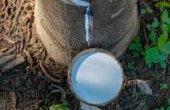PR-Arbeit für Ballons aus Naturlatex