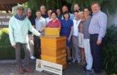 IdeenPlusMarken: Patenschaft für Bienen