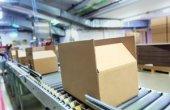 VerpackG: 2.000 Verfahren eingeleitet