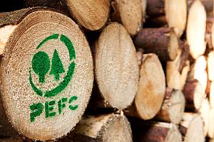 Baumstämme PEFC - Stabila: Zollstockserie ab sofort PEFC-zertifiziert